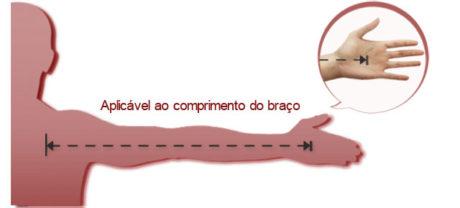 tamanho do violino em relação ao braço