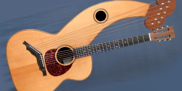 Dyer Harp Guitar – Andy Mckee